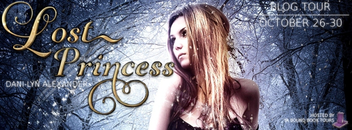 LOST PRINCESS TOUR BANNER